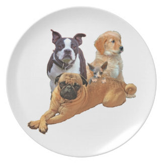 Dog posse with cat party plates
