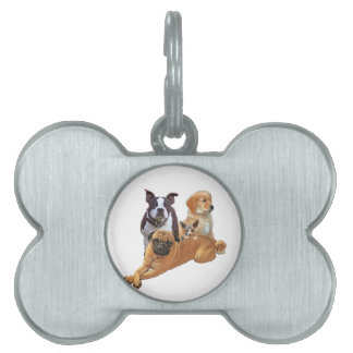 Dog posse with cat pet tag
