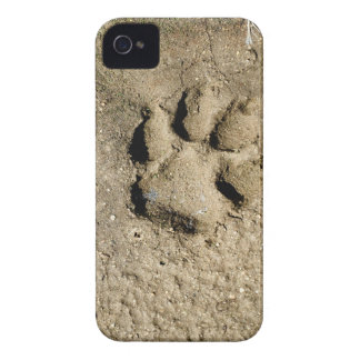 Dog print iPhone 4 cover