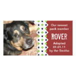 Dog/Puppy Adoption Announcement Picture Card