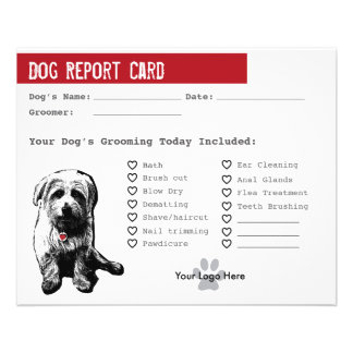 Dog Report Card for Dog Groomers 11.5 Cm X 14 Cm Flyer