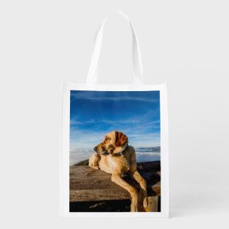 Dog Reusable Grocery Bags