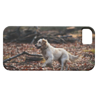 Dog running on dry leaves case for the iPhone 5