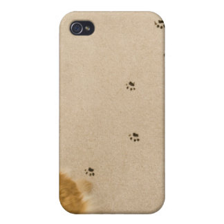 Dog s on Carpet iPhone 4 Covers