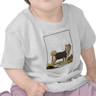 Dog - Siberian Husky Shirt