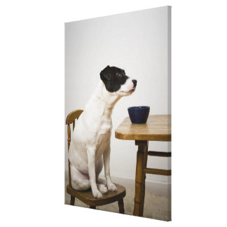 Dog sitting on a chair in front of a bowl on the gallery wrapped canvas