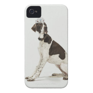 Dog sitting with a tiara on head iPhone 4 Case-Mate cases