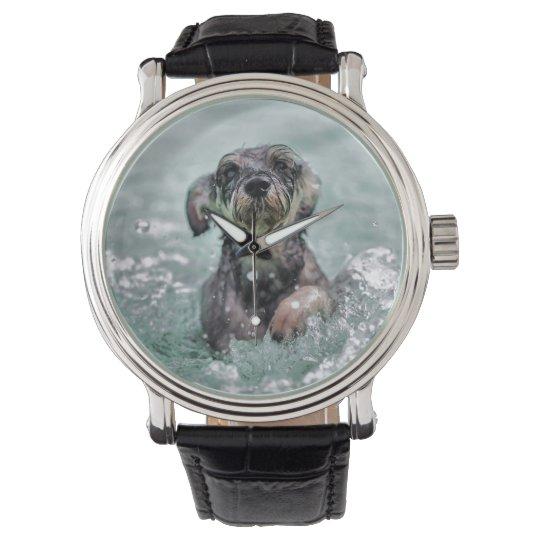 Dog Swimming Doggy Paddle Watch