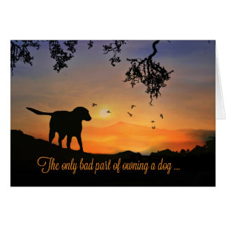 Dog Sympathy Card, Condolences for Loss of Dog Card