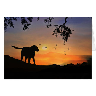 Dog Sympathy Card with Labrador Retriever Sunset
