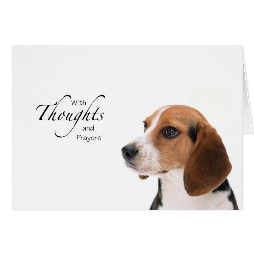 Dog Thoughts and Prayers Cards