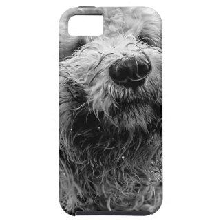 dog tough iPhone 5 case