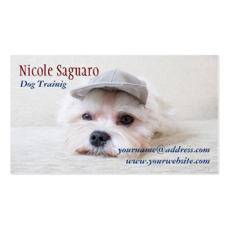 Dog Trainer Groomer Pack Of Standard Business Cards