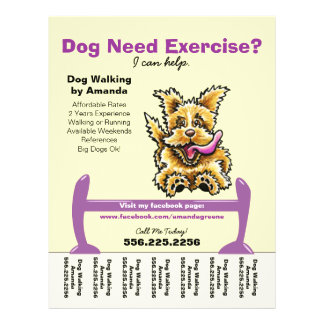 Dog Trainer Training Active Terrier Tear Sheet Custom Flyer