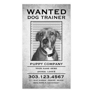 dog trainer wanted poster pack of standard business cards