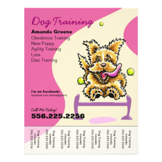 Dog Training Trainer Active Terrier Ad Tear Sheet 21.5 Cm X 28 Cm Flyer