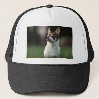 dog trucker hat