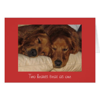 Dog Two Hearts Beat as One Valentine's Day Card
