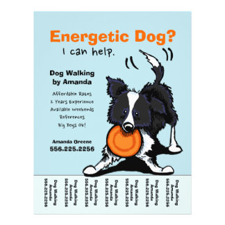Dog Walker Walking Personalized Tear Sheet 21.5 Cm X 28 Cm Flyer