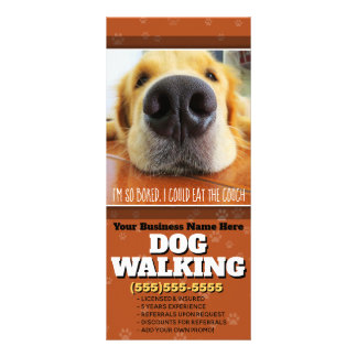 Dog Walking Customizable Marketing Advertising Rack Card