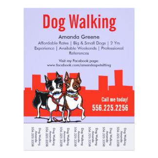 Dog Walking Walker Boston Terriers Tear Sheet Flyer Design