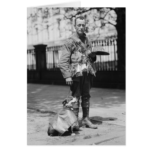 Dog Wearing a Coat, 1920s Cards