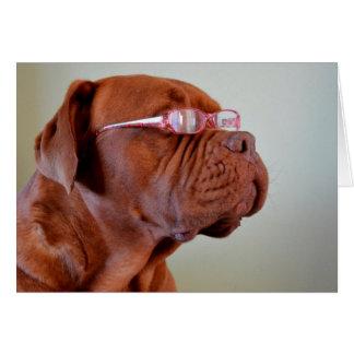 Dog Wearing Pink Eyeglasses Greeting Cards