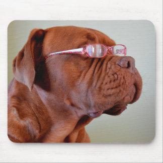 Dog Wearing Pink Eyeglasses Mouse Pads