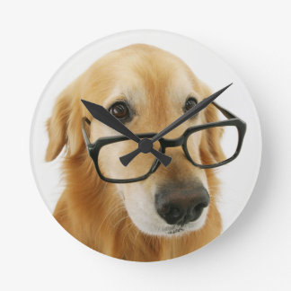 Dog wearing  tie and glasses sitting on chair round clock