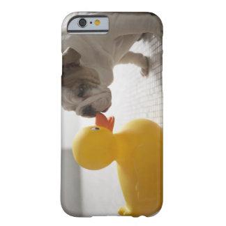 Dog with plastic duck barely there iPhone 6 case