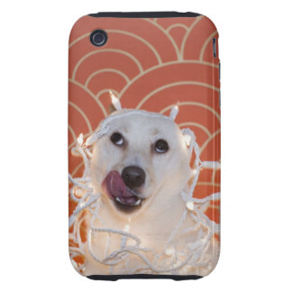 Dog Wrapped in Christmas Lights 2 iPhone 3 Tough Cases
