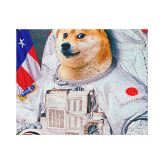 Doge astronaut-doge-shibe-doge dog-cute doge canvas print