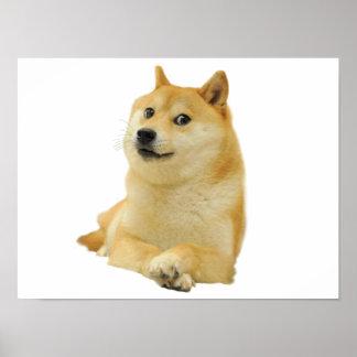 doge meme - doge-shibe-doge dog-cute doge poster