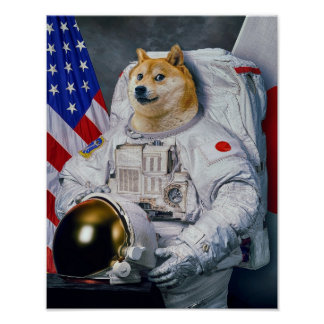 Doge print version