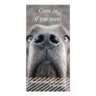 Doggen nose & text picture card