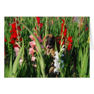 Doggenkarte Gladiolen Card