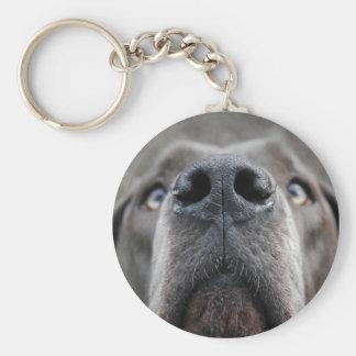 Doggennase Key Ring