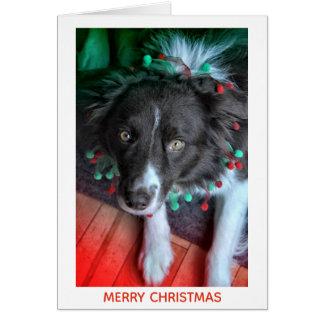 Doggie Christmas Card