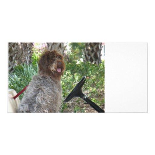 Doggie Driver Picture Card