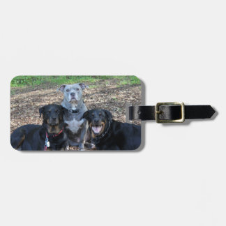 Doggie Family Picture Luggage Tag