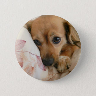 Doggie Lover 6 Cm Round Badge
