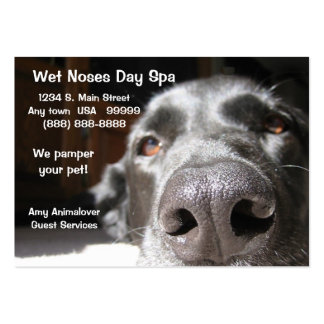 Doggie Spa Business And Appointment Card Pack Of Chubby Business Cards