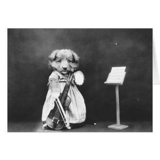 Doggie Violinist, Card