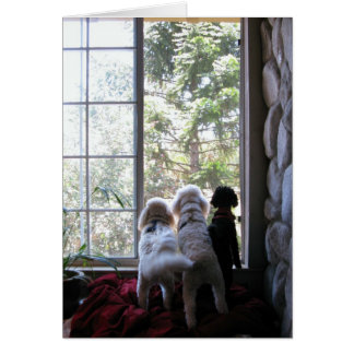 Doggies in the window card