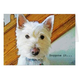 doggone_it_happy_belated_birthday_westie_dog_card r3143dbebece74240be7793a10c8f4324_xvuak_8byvr_324 happy birthday westie dog cards & invitations zazzle com au