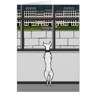 Doggy in the City Window Blank Card