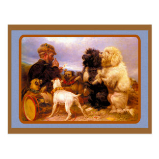 Dogs and Sailor Playing Card Postcard