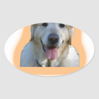 Dogs are better than human beings oval sticker