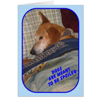 """Dogs are Meant to be Spoiled"" greeting card"