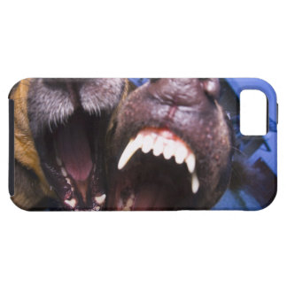 Dogs barking iPhone 5 cases